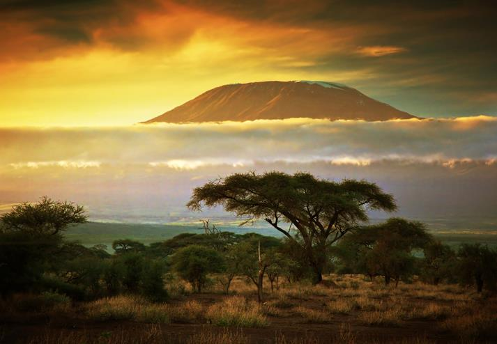 Kilimanjaro in Amboseli National Park