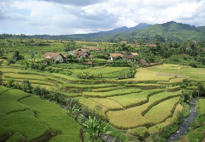 Landschap in Indonesië