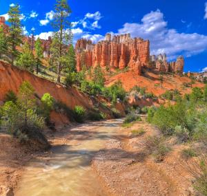 Bryce Canyon landschap