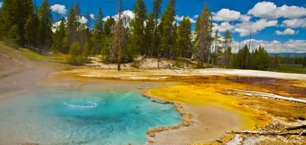 Geiserlandschap in Yellowstone National Park